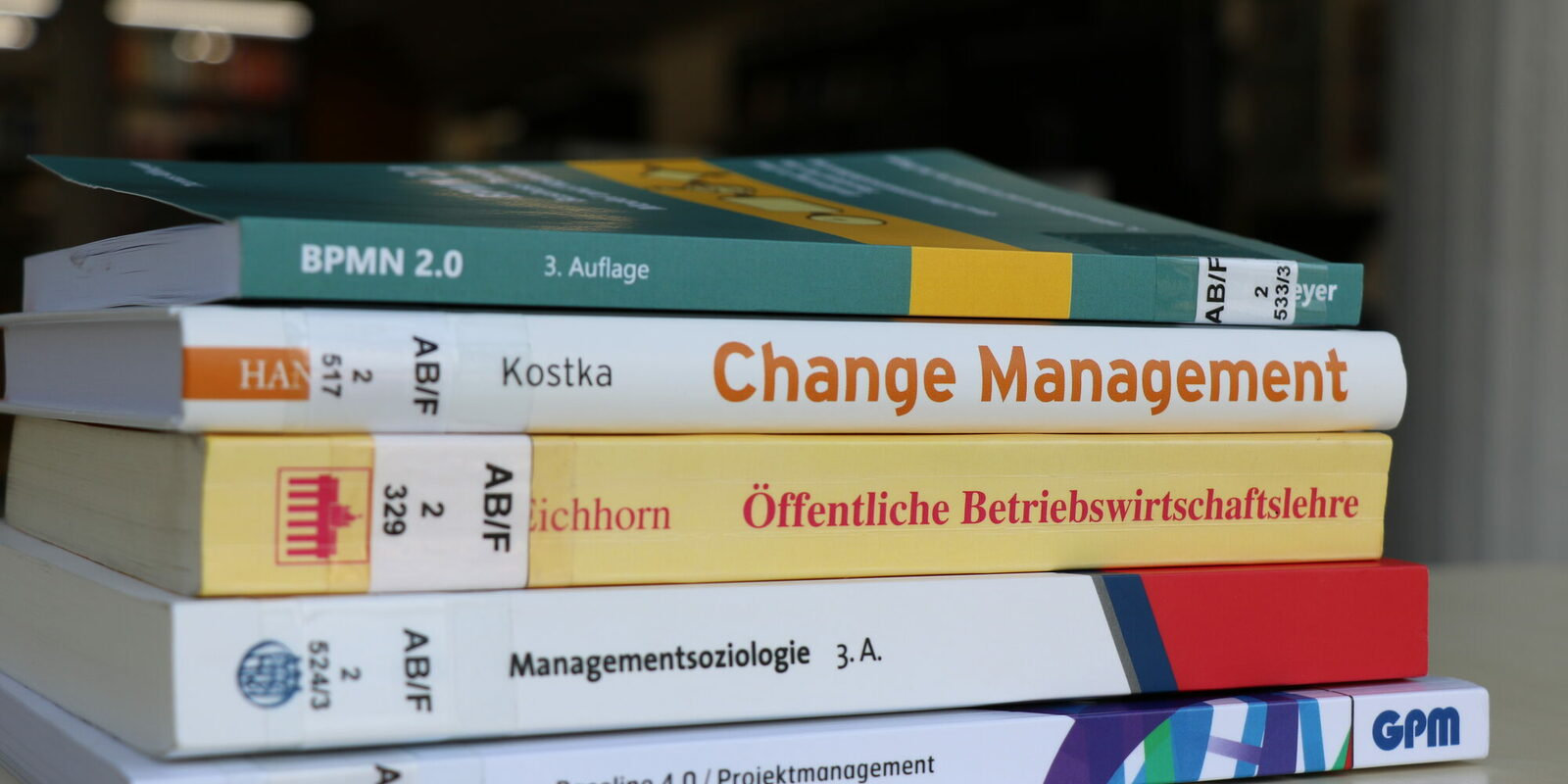 Buecher Public Management